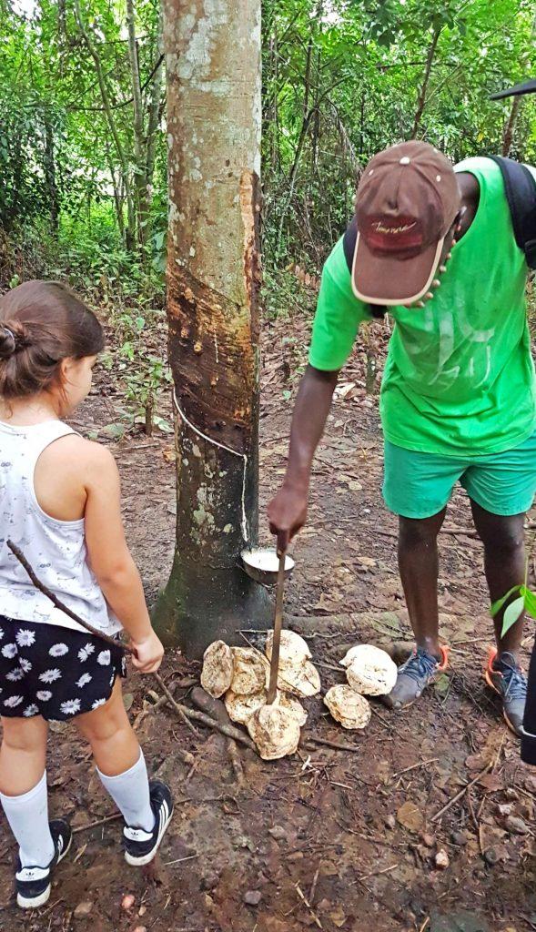 Domaine Bini, Ivory Coast